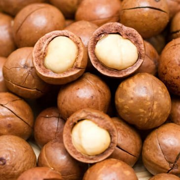 The Magic of Macadamia Oil for Your Skin