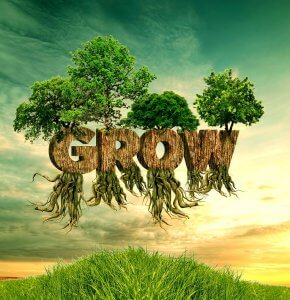 the spring equinox - the word grow with trees growing out of it