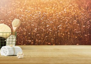 the benefits of dry body brushing - wheat and a basket of brushes
